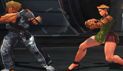 Play The perfect fighter Game