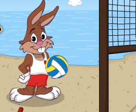 Play Beach volleyball game Game